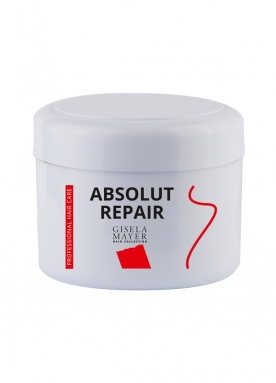 Absolut Repair HH 200 ml